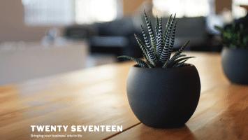 twentyseventeen theme